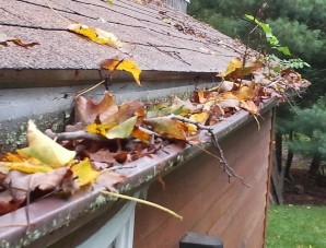 Central Pennsylvania clogged gutters